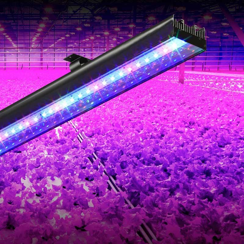 Led aqua bar lights 09m led grow bar lights manufacture seming led aqua bar lights 09m mozeypictures Choice Image